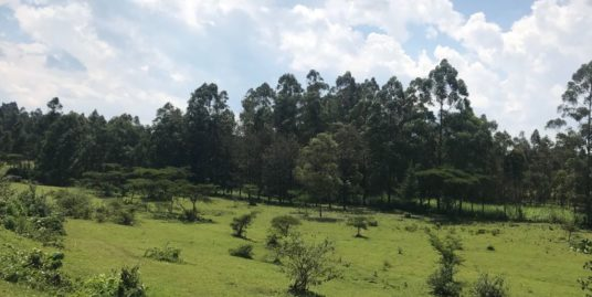 1/2 Acre Residential Land FOR SALE – Eldoret
