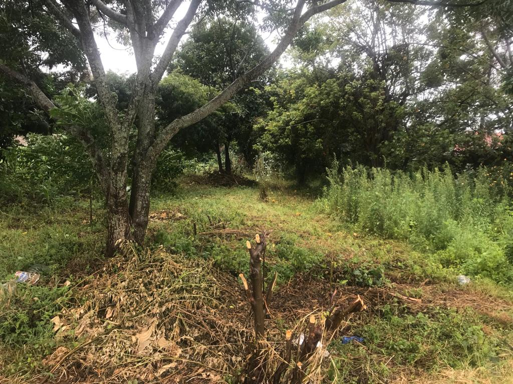 Prime land for sale near Ngong Racecourse