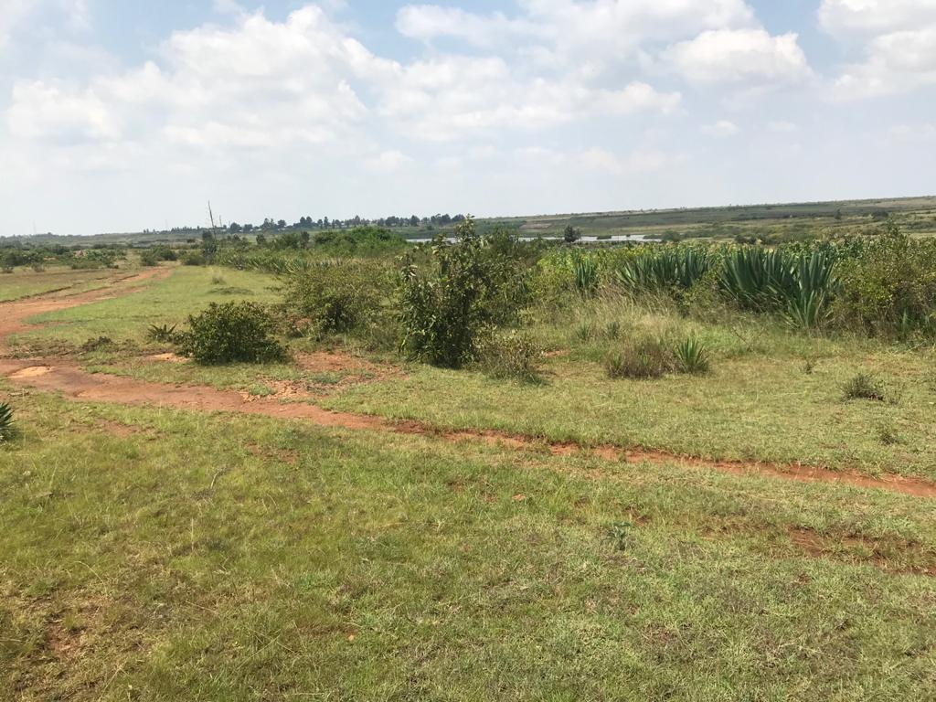 Prime Agricultural Land FOR SALE – Ol Mutonyi, Laikipia